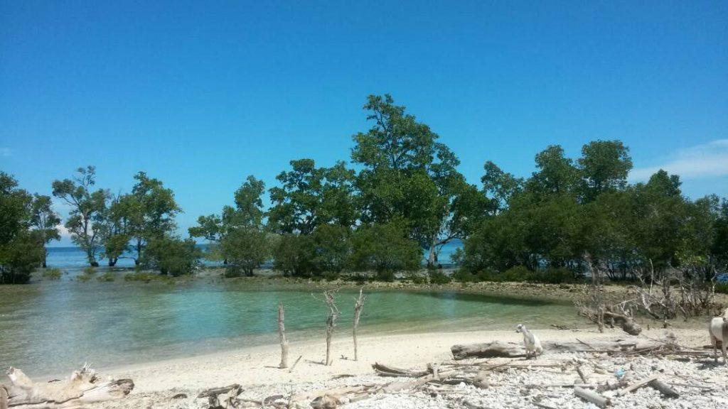 Pantai Sumare2